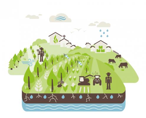Agroforst-Schaubild