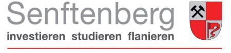 logo_stadt_senftenberg