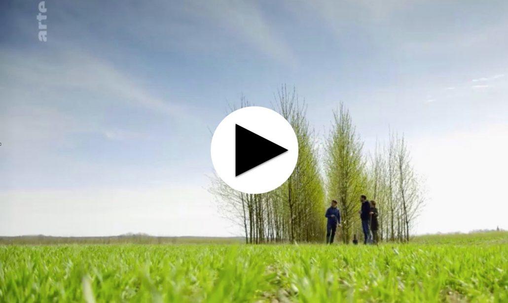 Agroforstwirtschaft Beitrag auf Arte