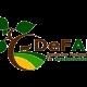 DeFAF Logo